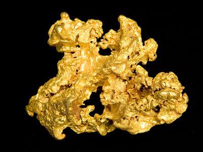 Human Biology Online Lab / Gold (Au) - Sophie Leonard